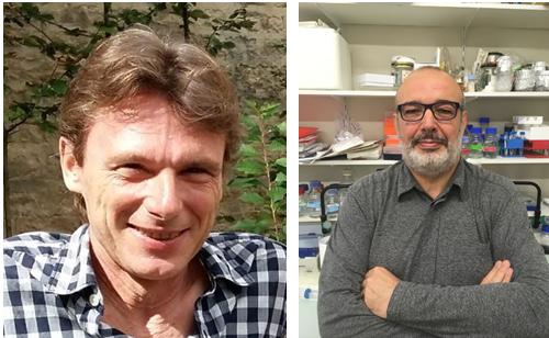 Vincent Phalip, ICV, and Olivier Van Wuytswinkel, University of Liege, intersection leaders